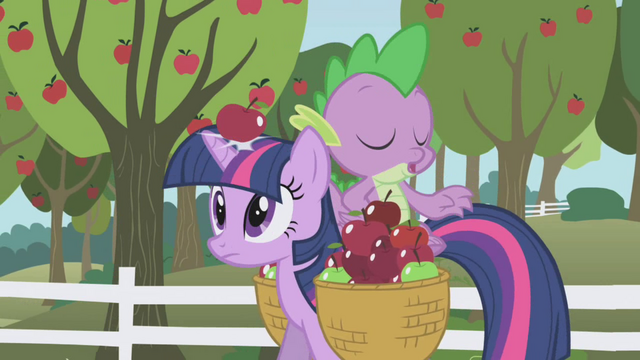 File:An apple hitting Twilight in the head S01E03.png