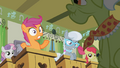 "Scootaloo ""wouldn't even exist?!"" S02E12.png"