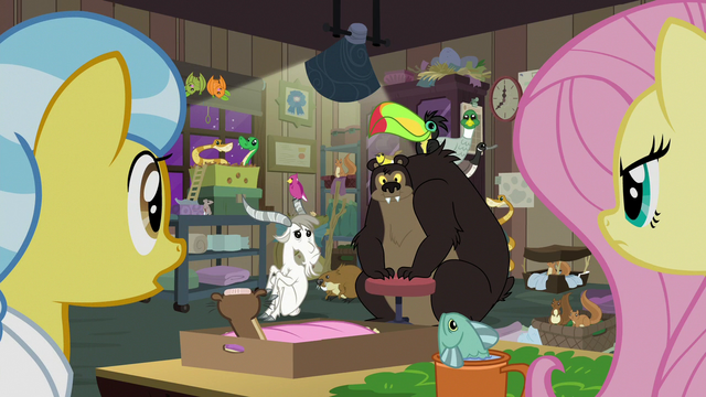 File:Surprised animals looking at Fluttershy S7E5.png