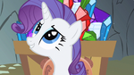 Rarity anything S1E19