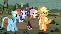 Twilight's friends smiling at Maud S4E18