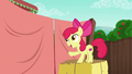 "Apple Bloom ""with my big sister"" S6E14.png"