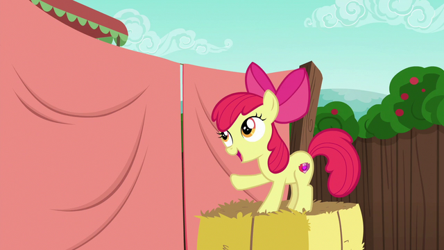 "File:Apple Bloom ""with my big sister"" S6E14.png"