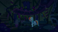 Rainbow walking around scattered cookie boxes S6E15