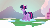 Twilight back into action S3E05