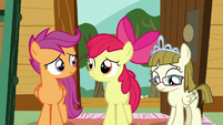 Apple Bloom and Scootaloo nod in understanding S7E6