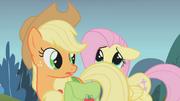 Fluttershy hiding behind Applejack S01E07.png