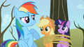 Rainbow Dash sounded like S2E10.png
