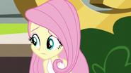 Fluttershy wonders what to do for Twilight EG3