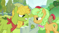 Pear family stallion vs. Goldie Delicious S7E13.png
