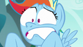 "Rainbow Dash ""where have you been?!"" S6E6.png"