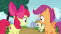 Apple Bloom and Scootaloo watch Zipporwhill chase Ripley S7E6.png