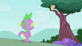Owlowiscious standing on the tree branch S4E23.png