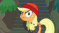 Applejack dressed like a salty sea captain S6E22.png