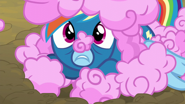 File:Rainbow Dash lives up to her nickname S6E7.png