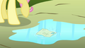 Fluttershy's letter lands in a puddle S2E19.png