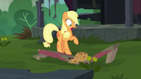 Bench breaks under Applejack's hat S5E16