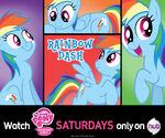 Rainbow Dash wallpaper from Hub Network