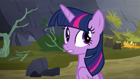 "Twilight Sparkle ""what was that?"" S5E23"