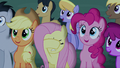 Audience getting excited; Fluttershy covering her eyes S6E6.png
