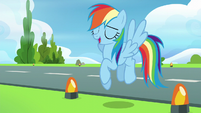 "Rainbow Dash ""right, no problem!"" S6E7"