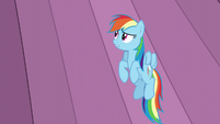 Rainbow looks at the curtains S6E2