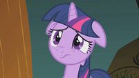 Twilight even more worried S1E10