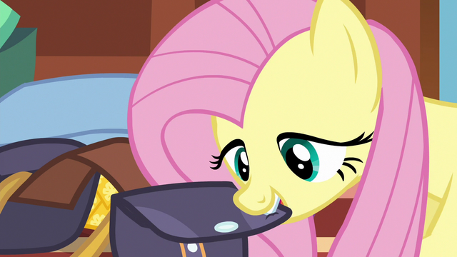 File:Fluttershy closing up her saddlebag S6E17.png