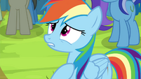 "Rainbow Dash ""but I was wrong!"" S4E22"