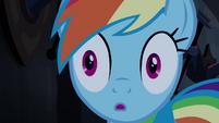 Rainbow Dash surprised S4E03