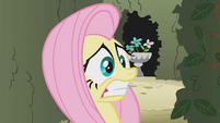 Scared Fluttershy S2E01