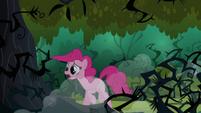 Pinkie Pie hears echoes S3E03