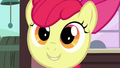 Apple Bloom's face S3E04.png