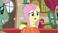 "Fluttershy ""not again!"" S6E11.png"