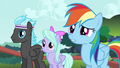 Rainbow Dash and Pegasi confused S4E16.png