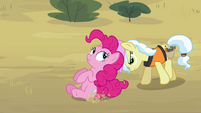 Pinkie Pie pushed off of construction site S4E12