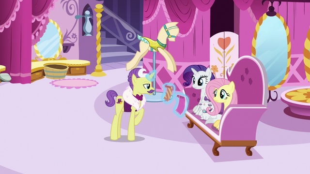 File:Fluttershy, Rarity, and Dandy in Carousel Boutique S7E5.png