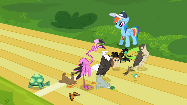 File:Rainbow Dash and animals S2E07.png