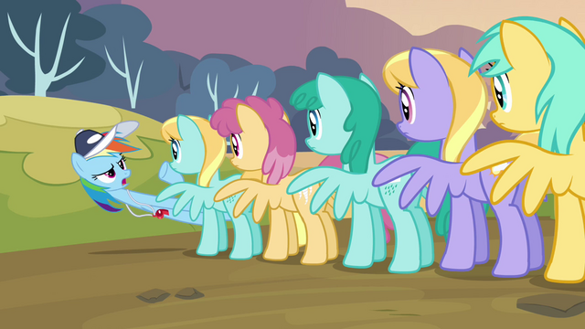 File:Rainbow looking at a line of pegasi S2E22.png
