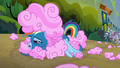 Rainbow Dash covered in cotton candy S6E7.png