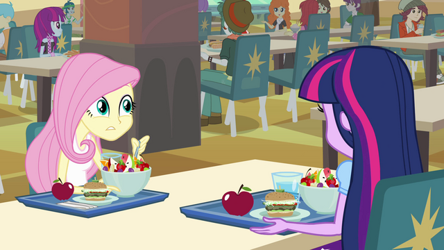 File:Twilight and Fluttershy at the lunch table EG.png