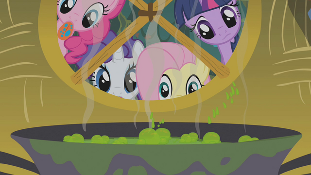 File:Twilight and friends look at Zecora's brew S1E09.png