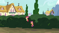 CMC sneaking over the bushes S4E15.png
