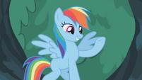 Rainbow Dash well how else S1E14