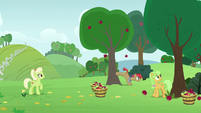 Granny watching her family buck apples S7E13