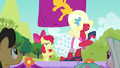 Apple Bloom and Orchard Blossom's lackluster routine S5E17.png