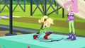 Applejack picks up her bow EG3.png
