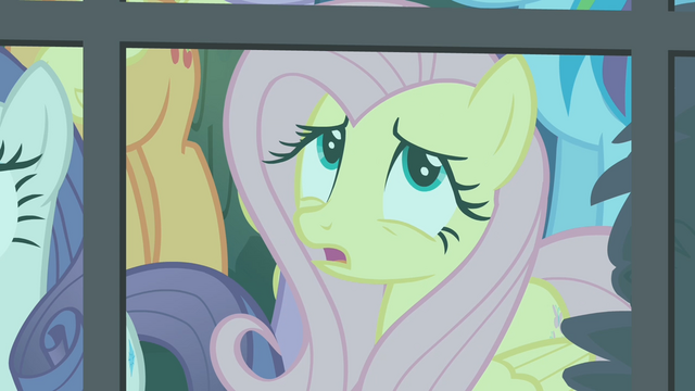 File:Fluttershy 'Should we go and help her...' S4E04.png
