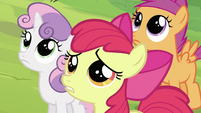 Cutie Mark Crusaders after being rejected by Applejack S2E23