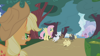 Applejack sees bunnies running away S1E04